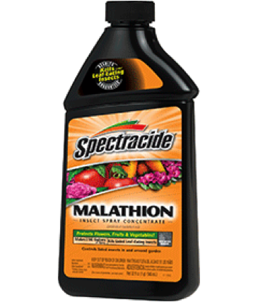 Spectracide Malathion