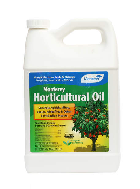 Horticultural Oil 1 Gal