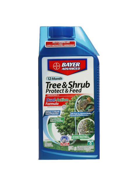 Bayer Tree & Shrub Protect & Feed